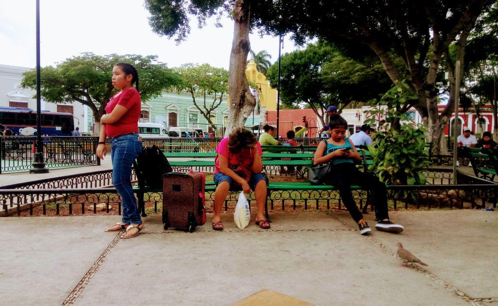 Vie au parc San Juan.